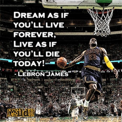 Best Motivational Sports Quotes By Top Athletes Wild Child Sports Amazing Motivational Sports Quotes