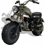 Fast Gas Powered Mini Bike - Monster Moto 212CC - Wild Child