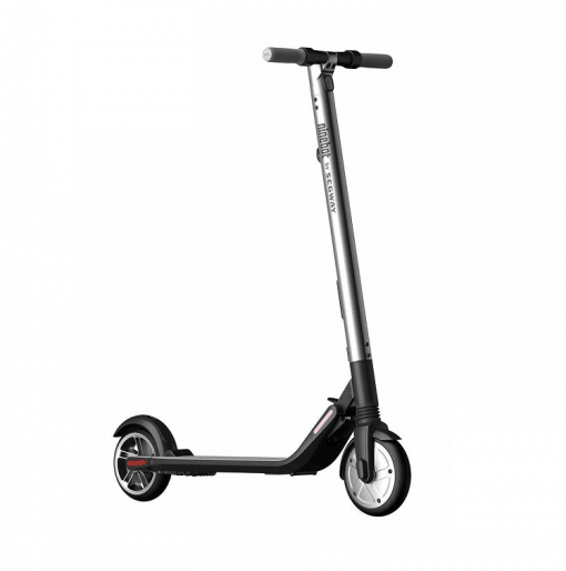 Ninebot Segway Kick Scooter