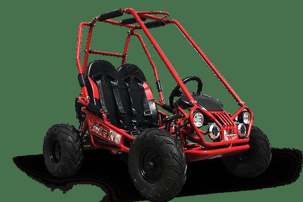 Off Road Kids Go Kart - TrailMaster Mini XRX